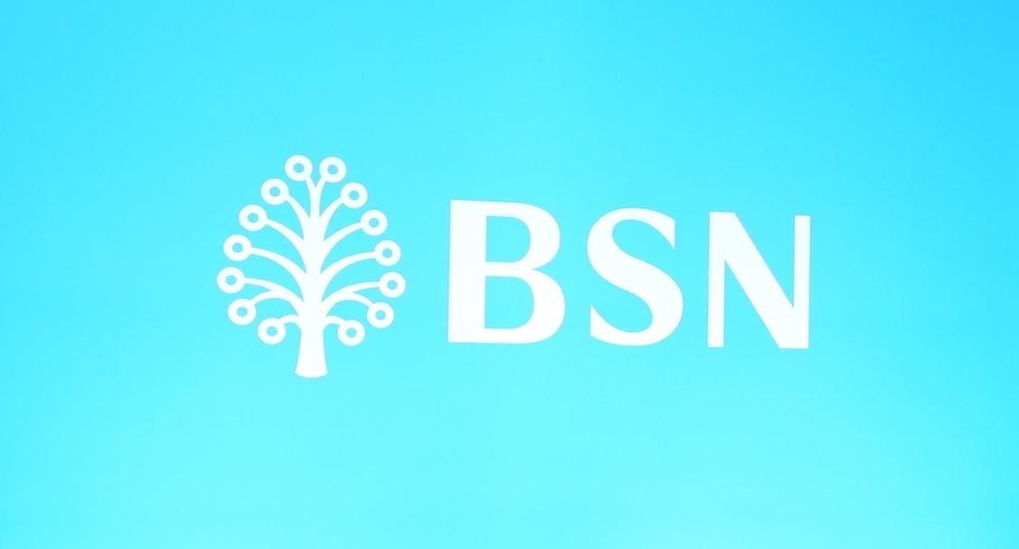 BSNK3.jpg