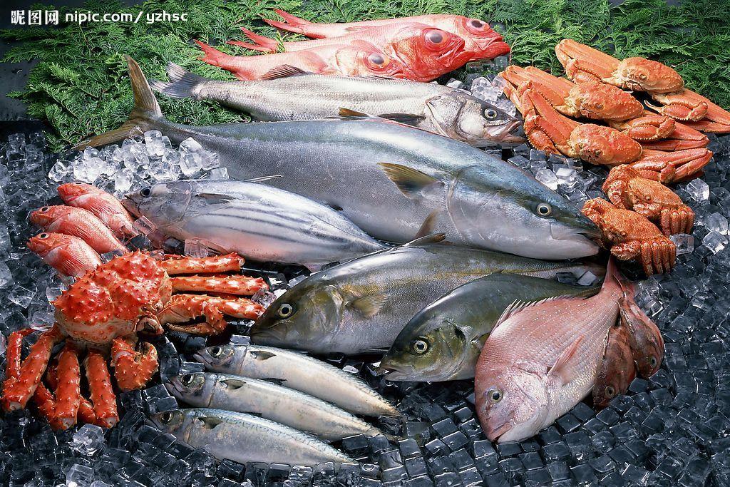 kamparfrozenfish.jpg